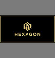 hg hexagon logo design inspiration vector image vector image