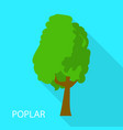 poplar icon flat style vector image vector image