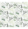 seamless pattern of eucalyptus palm fern vector image vector image