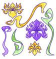 set iris flowers art nouveau vintage style vector image