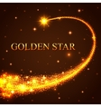 Shining falling golden star in the night sky vector image vector image