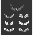 White wings collection vector image vector image