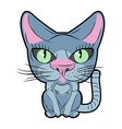 Cute cat with large eyes pet vector image
