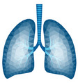 abstract polygonal image of human lungs vector image