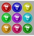 graphical decorative bows Set colourful buttons vector image vector image