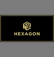 hp hexagon logo design inspiration vector image vector image