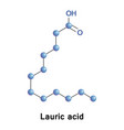 lauric a saturated fatty acid vector image vector image
