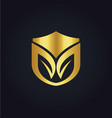 organic shield gold logo vector image