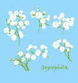 set of branch beautiful hand-drawn white vector image vector image