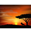 Sunset background with animal lion vector image