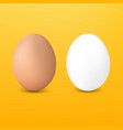 two eggs with yellow background vector image