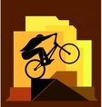 Bicycle extreme sport vector image vector image