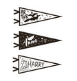 hand drawn adventure pennant flags set vector image