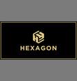 hy hexagon logo design inspiration vector image vector image
