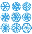Set of snowflakes on a white background vector image vector image