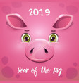 2019 year pig new year greeting card vector image vector image