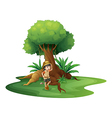 A young girl near the giant tree vector image vector image
