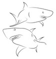black line sharks on white background hand drawn vector image