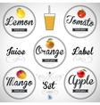 fruit juice Detailed label set vector image vector image