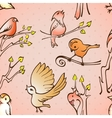 Seamless pattern birds vector image