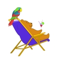 Teddy bear and parrot vector image vector image