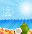 Vacation to Summer with coconut fresh vector image vector image