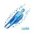 winter sports luge sledging vector image vector image