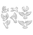 a set of world pigeons with a branch of an olive vector image