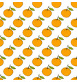 colorful grapefruit seamless pattern vector image