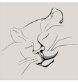 contoured head of a sleeping cat vector image vector image
