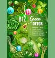 green diet detox vitamins food nutrition vector image vector image