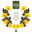 Herbarium wreath of natural yellow flowers vector image vector image