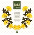 herbarium wreath of natural yellow flowers vector image