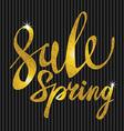 Spring Sale Gold inscription paint glitz glamor vector image
