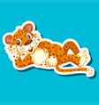 a leopard sticker character vector image vector image