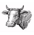 black cow vector image vector image