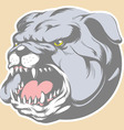 Bull Dog Head Cartoon vector image vector image