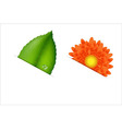Flower And Leaf vector image vector image