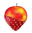 Fruit Apple Strawberry Modify Gmo vector image vector image