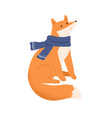funny fox wrapped in warm scarf flat vector image