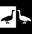 geese black silhouette vector image