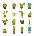 Cute cartoon cactus collection flat nature vector image