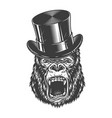 angry gorilla in monochrome style vector image