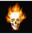 burning skull vector image