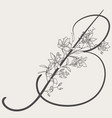 hand drawn flowered b monogram and logo vector image