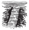salmon ladder vintage vector image vector image