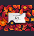 autumn sale rectangular banner with 3d leaves vector image vector image