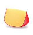 cheese realistic piece icon vector image vector image
