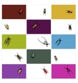 Design cards with beetles sketch vector image