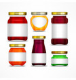 fruit jam jars with label vector image